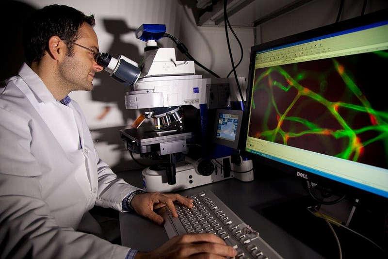 Novartis Institutes for BioMedical Reseach (NIBR), Cambridge, USA