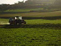 Agricoltura - Foto di Vermondo