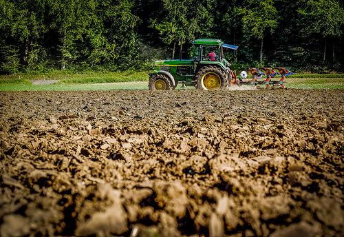 Politica Agricola Comune - photo credit: Matthias Ripp