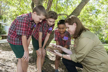 Educazione ambientale - photo credit: Brisbane City Council