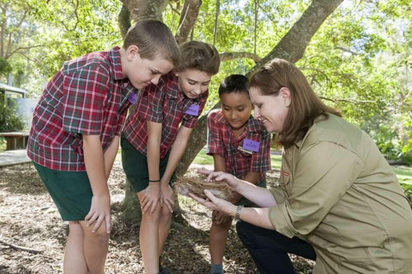 Educazione ambientale - photo credit: Brisbane City Council