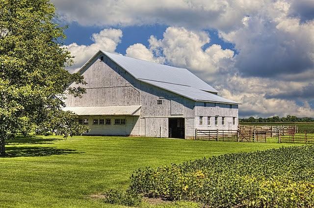 Contributi agricoltura - Foto di William Sturgell da Pixabay