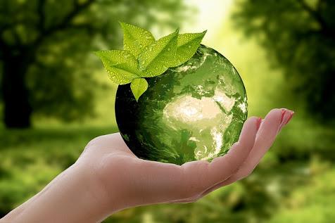 Studio UE su aumento mercato prodotti sostenibili: photocredit annca