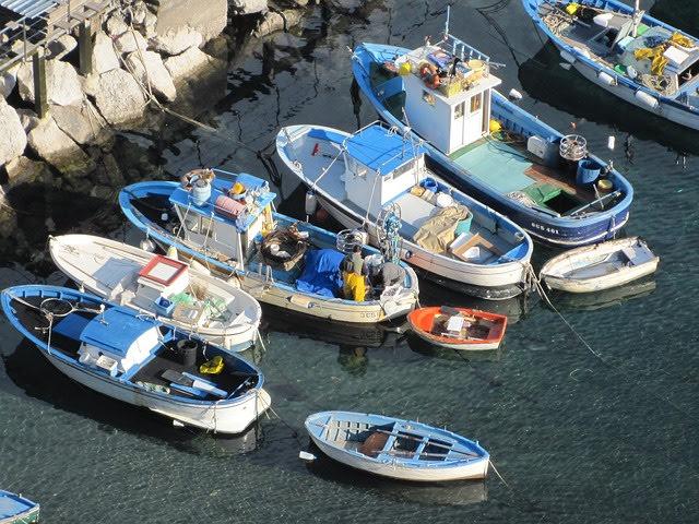 Pesca - Photo credit: Foto di simone saponetto da Pixabay