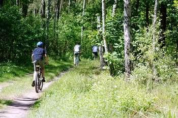 Cosme turismo sostenibile