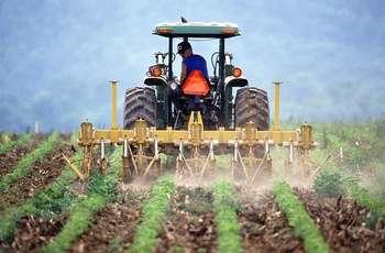 PAC: investimenti e azioni sostenibili nel settore agricolo