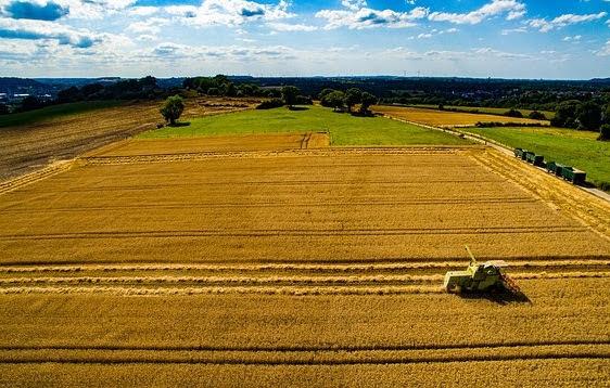 Horizon 2020: bando UE innovazione agricoltura