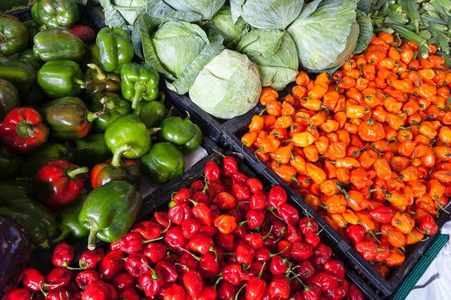 Agricoltura - Photo credit: Foto di John Lambeth da Pexels