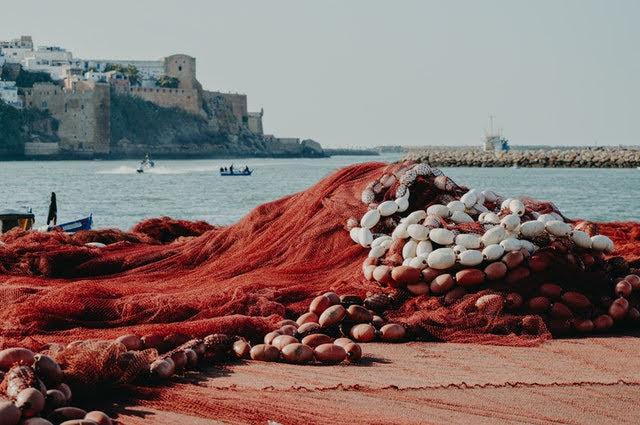 Possibilità pesca - Photo credit: Foto di Meliani Idriss da Pexels