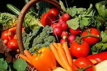 Agricoltura biologica - Foto di Sven Hilker da Pixabay