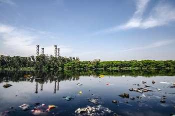 Inquinamento zero - Foto di Yogendra Singh da Pexels