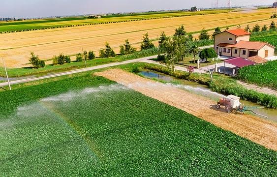 Irrigazione agricoltura - Photo credit: Foto di Pascvii da Pixabay