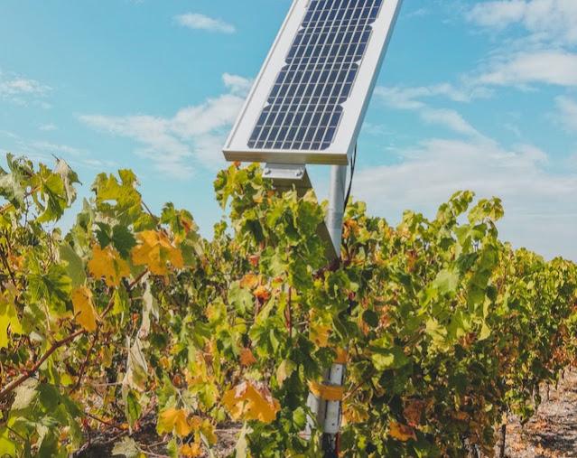 Agrivoltaico incentivi - Foto di Czapp Árpád da Pexels